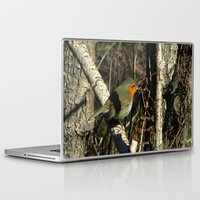 robin Laptop & iPad Skins featuring robin by giol's