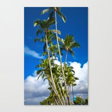 Palm Trees 7 Canvas Print