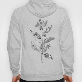 Flowers and Textiles Hoody