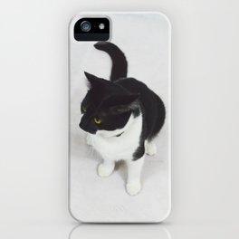 Smudge 2.0 iPhone Case