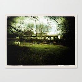 Old Barn - Sepia Canvas Print
