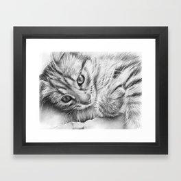 Cat Kitten Dawing Framed Art Print