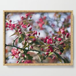 RED APPLE BLOSSOMS Serving Tray