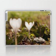 on the ground Laptop & iPad Skin
