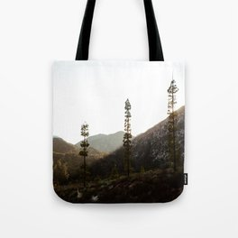 sunset in angeles crest forest Tote Bag