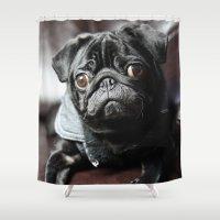 pug Shower Curtains featuring Pug by Falko Follert Art-FF77