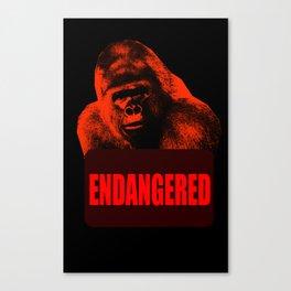 Endangered Gorilla Canvas Print