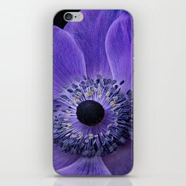 Purple Anemone iPhone Skin