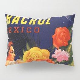 Veracruz Travel Poster Pillow Sham