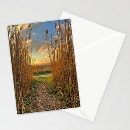 Midwest Grasslands Sunset Stationery Cards