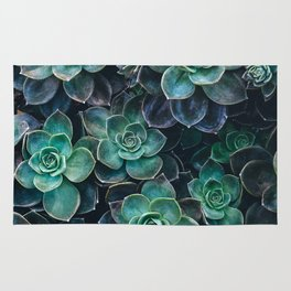 Succulent Blue Green Plants Rug