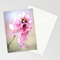 Apple Blossom Stationery Cards