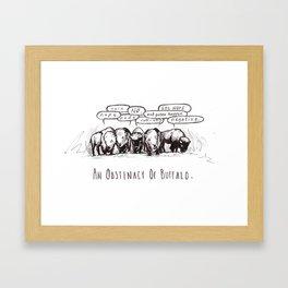 Animal Collective 4: An Obstinacy of Buffalo Framed Art Print