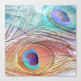 Pastel Boho Peacock Canvas Print