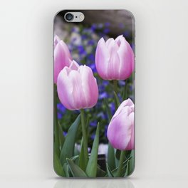 Spring gathering of pink tulips iPhone Skin