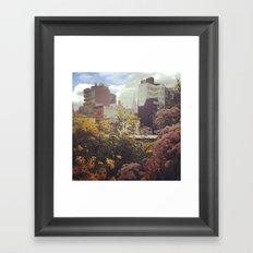 High Line Views Framed Art Print