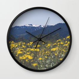 Spring Valley Wall Clock