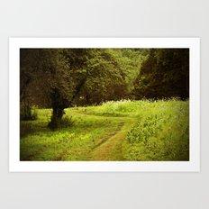 A Summers Trail Art Print