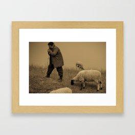 Herder   Framed Art Print
