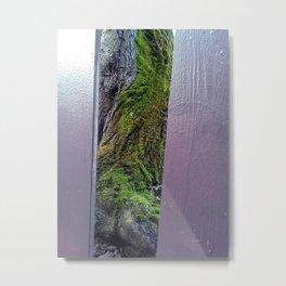 Fenced In #3 Metal Print