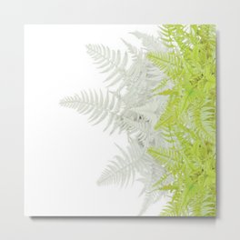 PALE GREEN & GREY ABSTRACT WOODLAND FERNS ART Metal Print