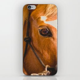 the horse's eye. iPhone Skin