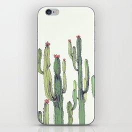 Dry Cactus iPhone Skin