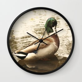 What, Me Sir? Ducking the issue Wall Clock