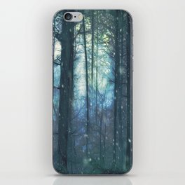The Woods In Winter iPhone Skin
