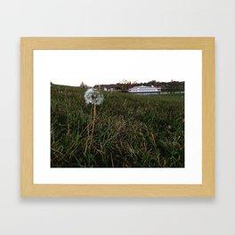 Showboat Wishes Framed Art Print