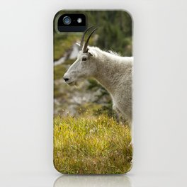 Old Beauty iPhone Case