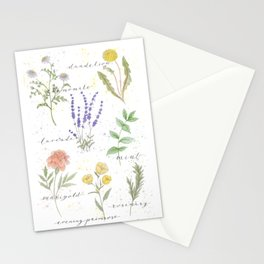Medicinal Herbs Stationery Cards