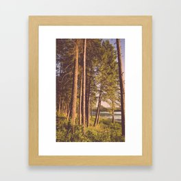 Retro Forest Framed Art Print