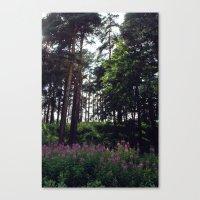 finland Canvas Prints featuring Porvoo- Finland by Cynthia del Rio