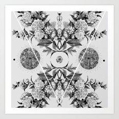 xii i iii iv  Art Print