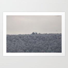 some winter trees Art Print