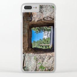 Presidents Framed Clear iPhone Case