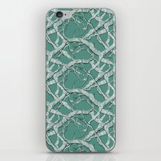 Winter Branches iPhone Skin