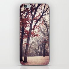 Last One for 2012 iPhone & iPod Skin