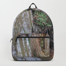 The  Swamp Fairy's Home Backpack