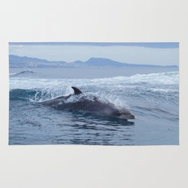 Dolphin: love for waves, love for life Rug