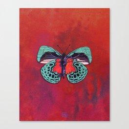 Watercolor Butterfly #1 - Crimson Red, Aqua Blue, Purple Canvas Print