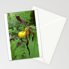 Yellow Lady's Slipper Stationery Cards
