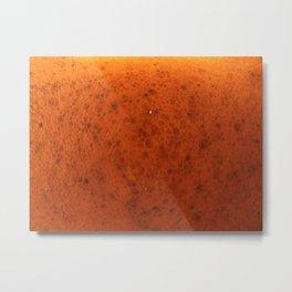 en orange Metal Print