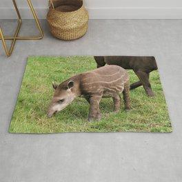 Baby Tapir Rug