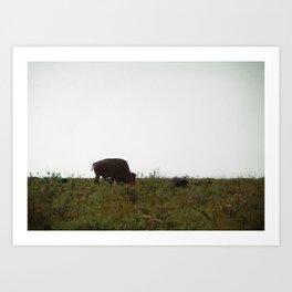 Wildlife Refuge Art Print