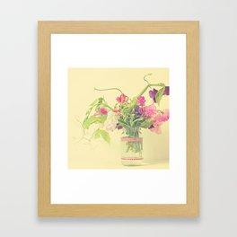 Sweet pea  Framed Art Print