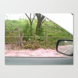 From the Car Window Canvas Print