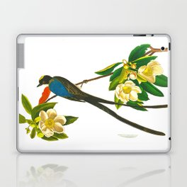 Fork-tailed flycatcher Bird Laptop & iPad Skin