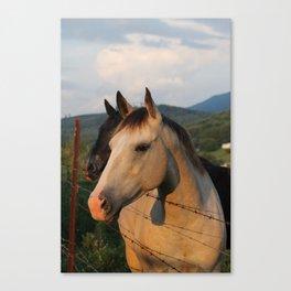 """You had me at horses..."" Canvas Print"